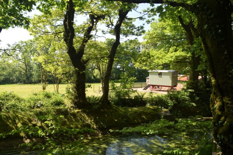 View towards this delightful retreat through the trees