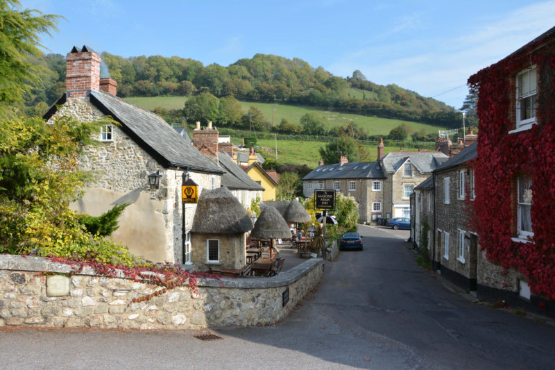 The pretty village of Branscombe with two welcoming pubs.